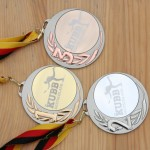 Medaillen Kubb, Medaillen Wikingerschach,