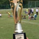 Wanderpokal Kubb Wanderpokal Deutsche Kubb Meisterschaft